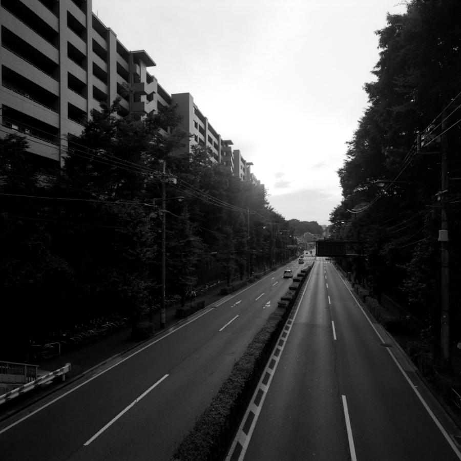 マンションと道路