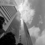 新宿・代々木【サザンテラス、靖国通り、新宿通りなど】 with HASSELBLAD SWC