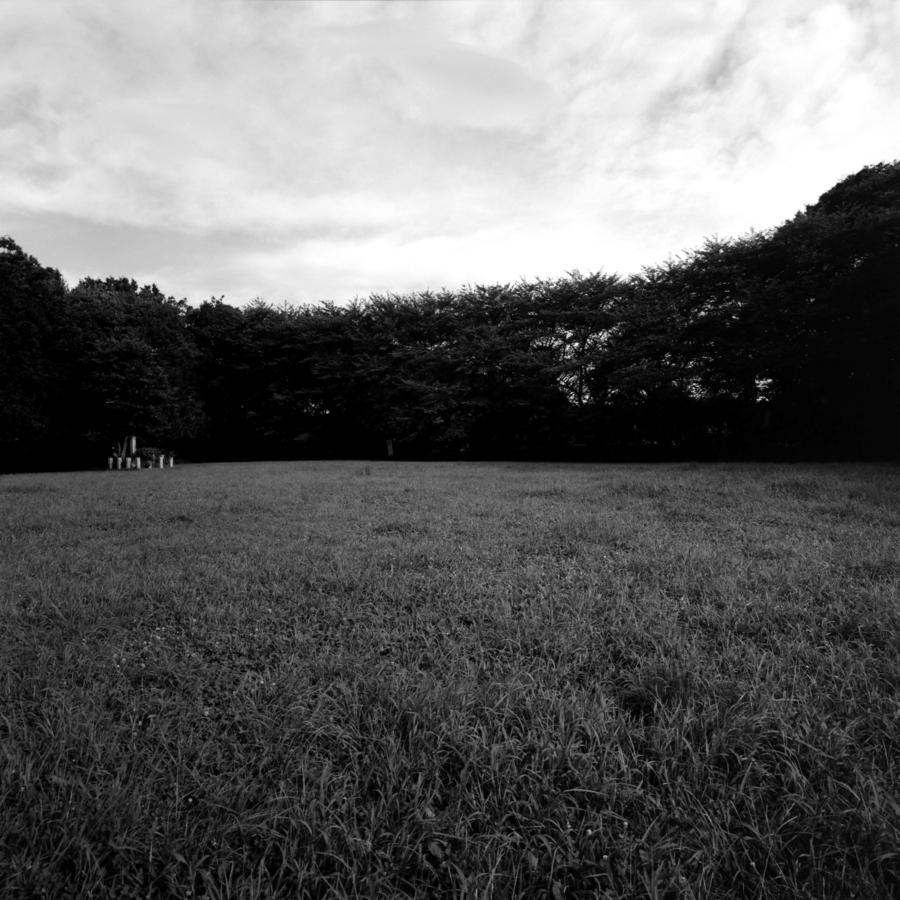 赤塚城本丸跡 草原