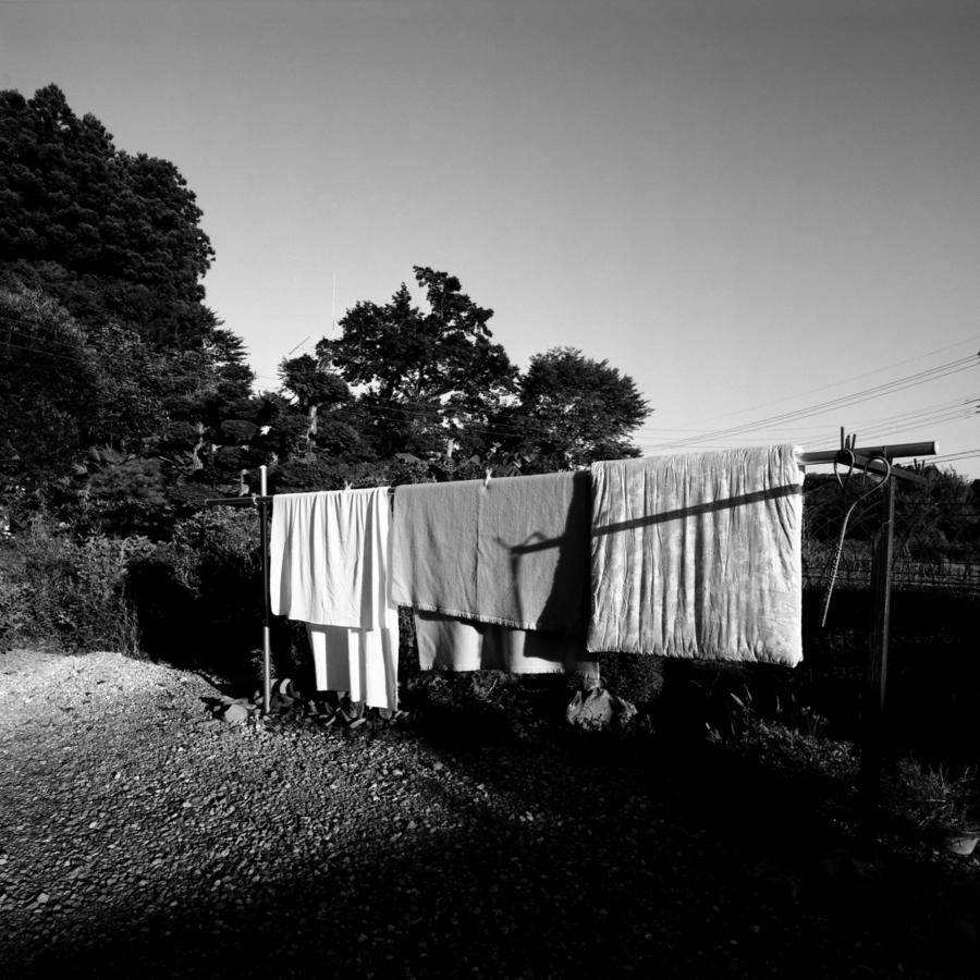 庭に干された布団