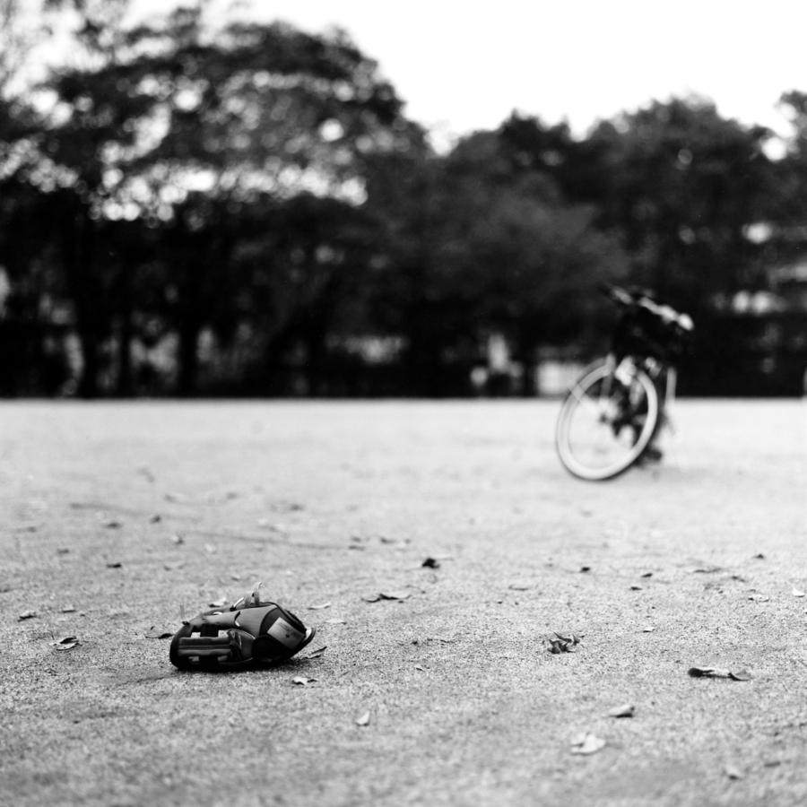 公園に放置されたグローブ