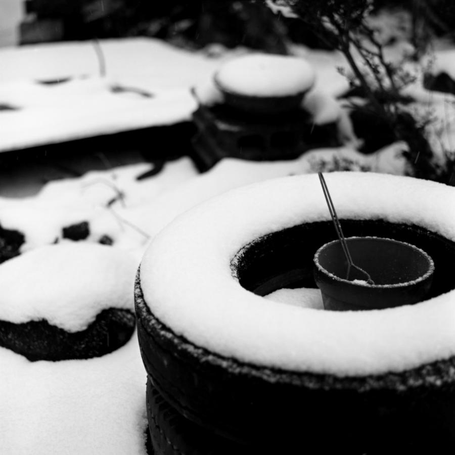 古タイヤに積もった雪