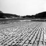 那須に帰省【大晦日から降った雪が積もる景色】 with Carl Zeiss Planar C100mm F3.5 T*