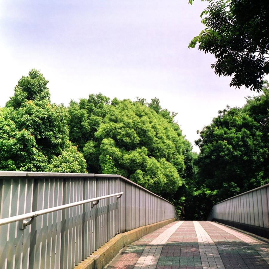 光が丘公園 歩道橋