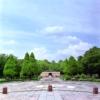 光が丘公園【けやき広場、憩いの森など】with ROLLEIFLEX F3.5 Xenotar 75mm