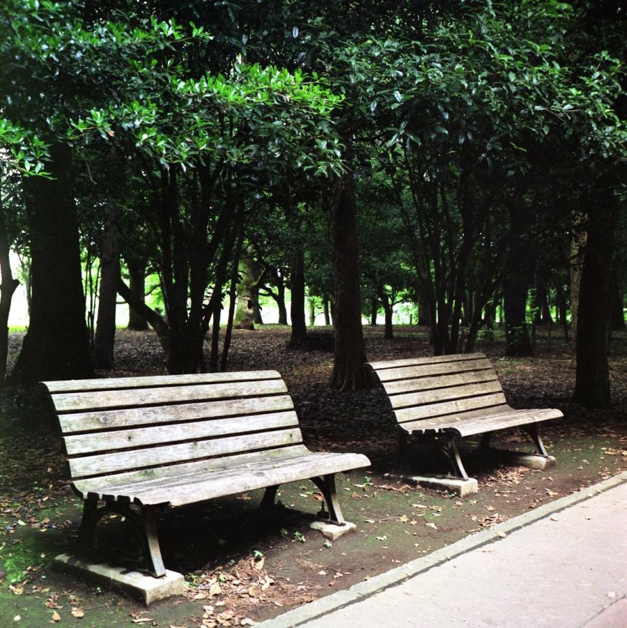 光が丘公園 木製のベンチ