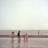葛西臨海公園・葛西海浜公園 with Sonnar C150mm F4 T* & Xenotar 75mm F3.5
