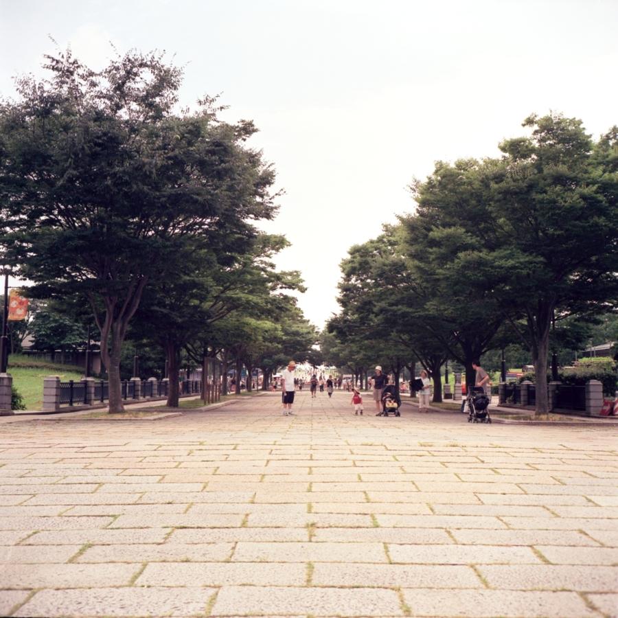 葛西臨海公園 大きな通り