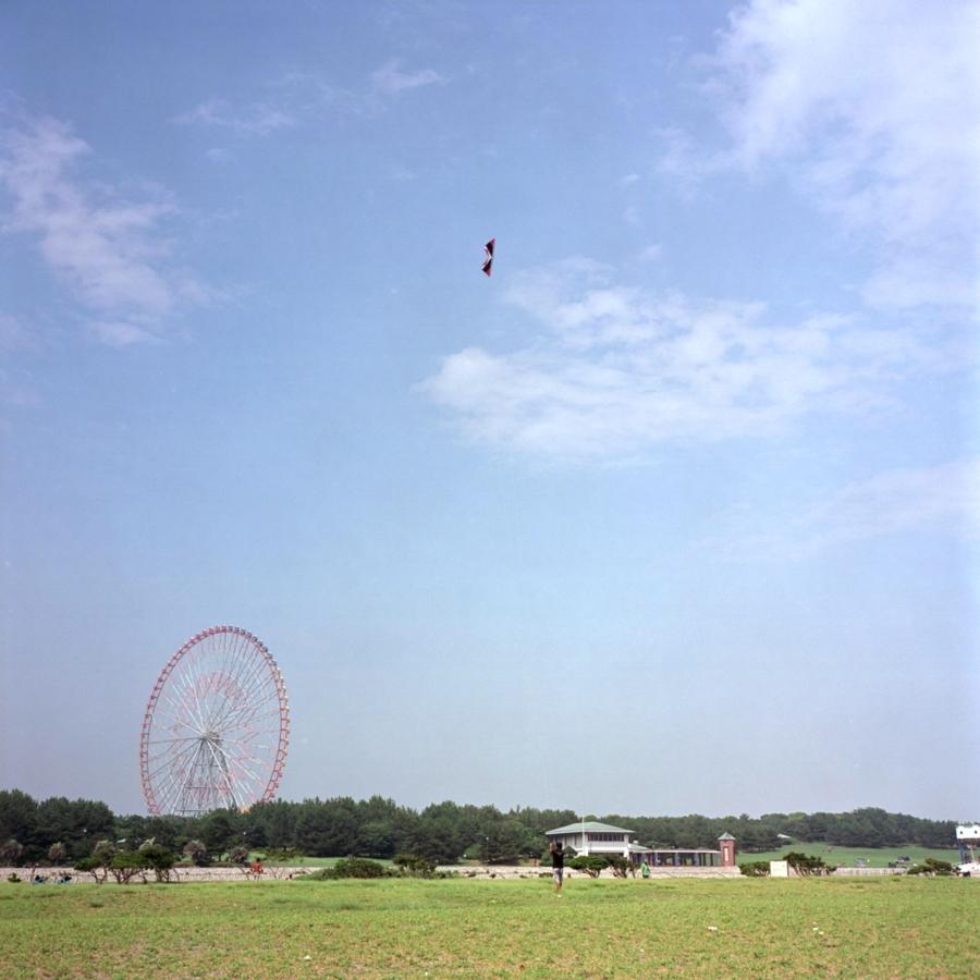 葛西海浜公園 凧揚げ 遠くに見える観覧車