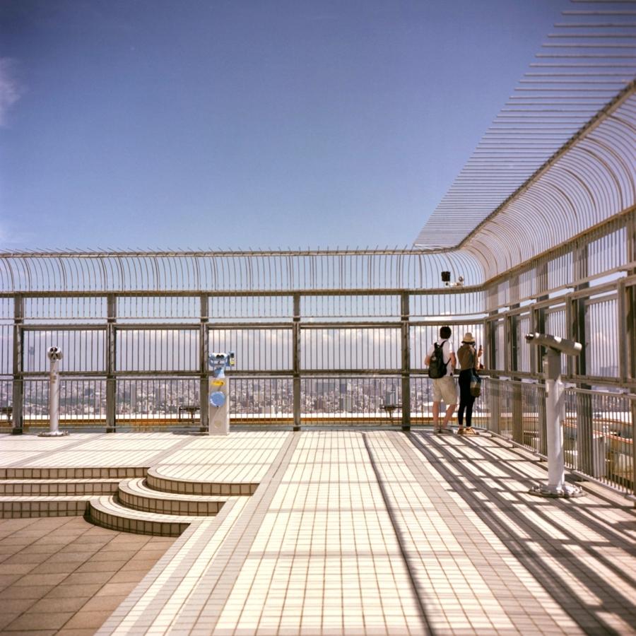 展望台から景色を眺める人たち