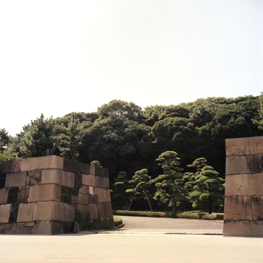 皇居 本丸跡へ続く坂と石垣