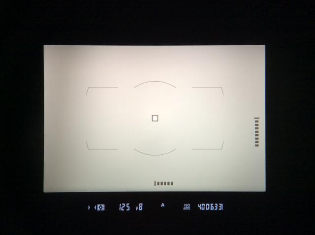 Nikon D850 ファインダー内水準器
